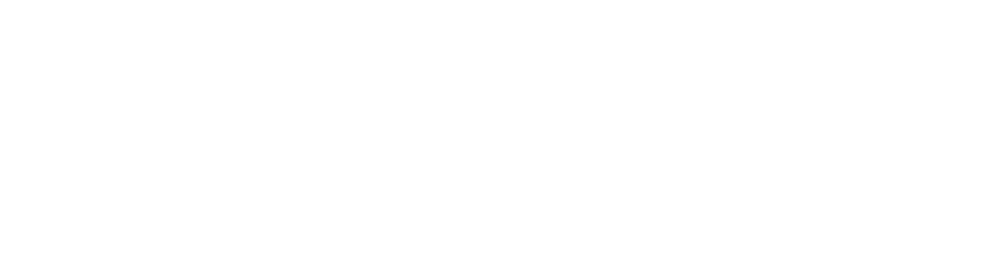 News Integrity Initiative